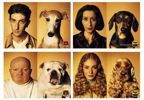 сходство людей и собак