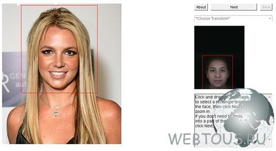 определить область лица