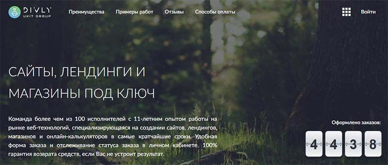 сайт компании divly