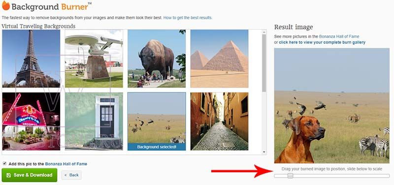 замена фона на фотографии