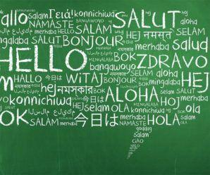 5-translators