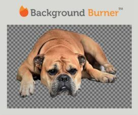 background-burner-site