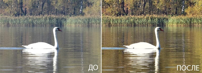 пример фото до и после обработки