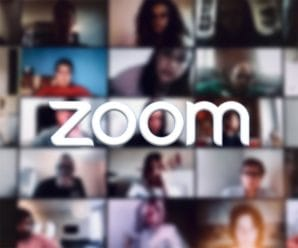 zoom-article