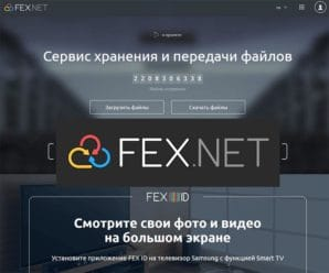 fexnet-site