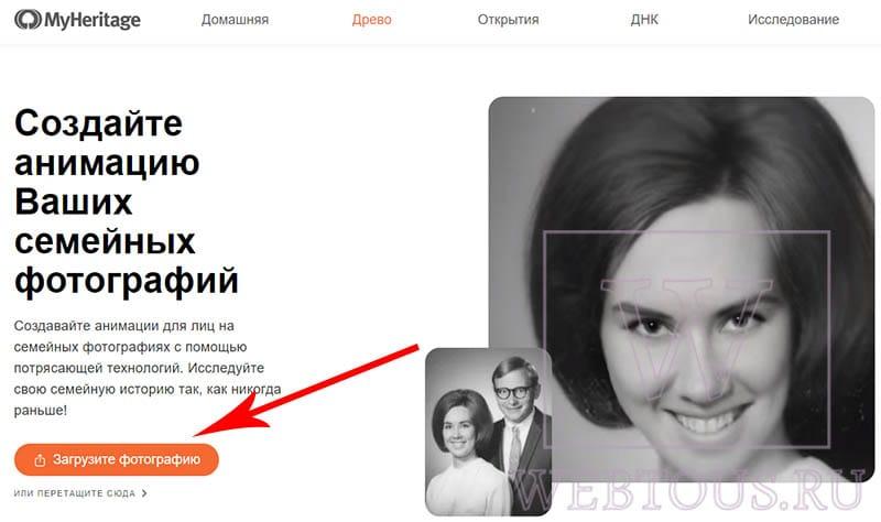 сайт myheritage на русском